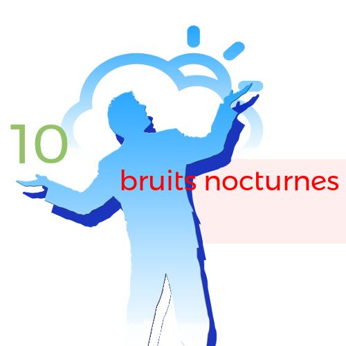 10. bruits nocturnes